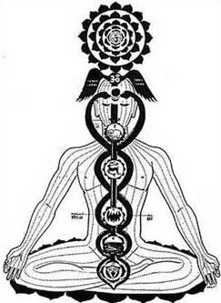 איור המתאר את עליית הקונדליני, המומשלת לנחשים, במעלה הצ'אקרות, מרכזי האנרגיה של הגוף